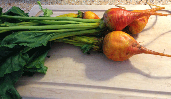 Whole Golden Beets